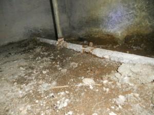 水道管の錆